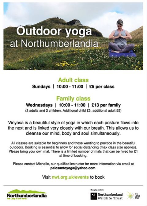 Outdoor Yoga At Northumberlandia Cramlington Town Council